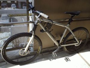 20100327p1010244bycicle_2