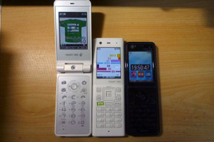 20121124honey_bee5p1080862